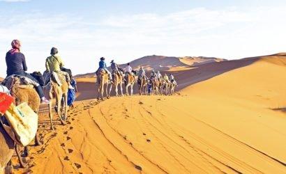 Ankhtours, Egypt desert safari